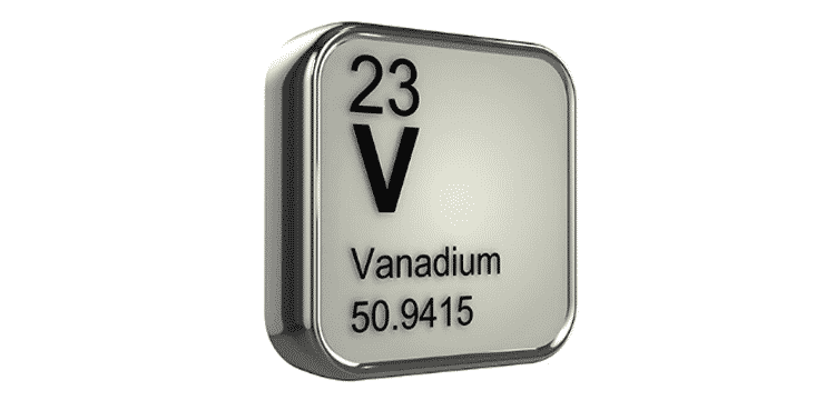 Canegrass vanadium hits buoy Bluebird